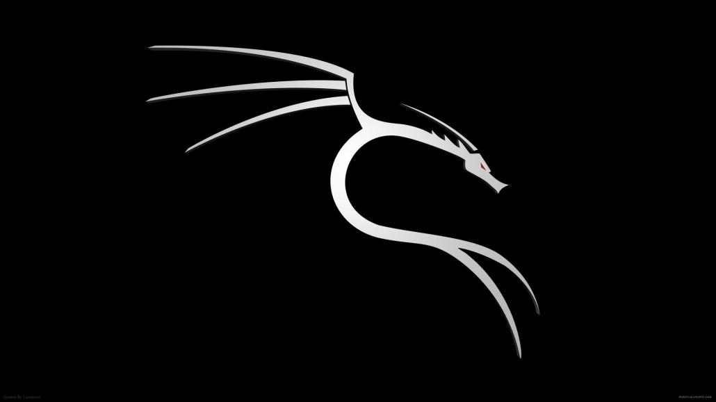 دو روش متفاوت آموزش کرک سرور مجازی (vps) با kali linux